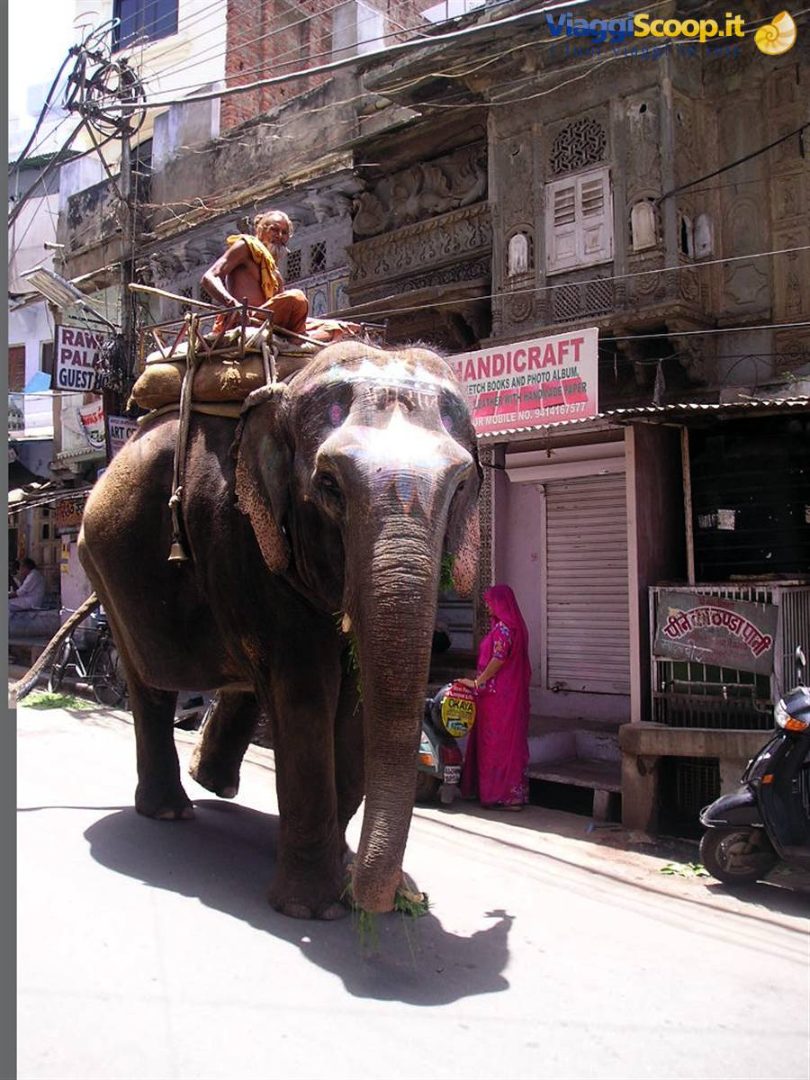 incontri Udaipur Rajasthan