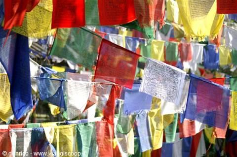 Bandiere di preghiera tibetane in himachal pradesh india