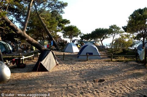 golfo di sogno camping corse