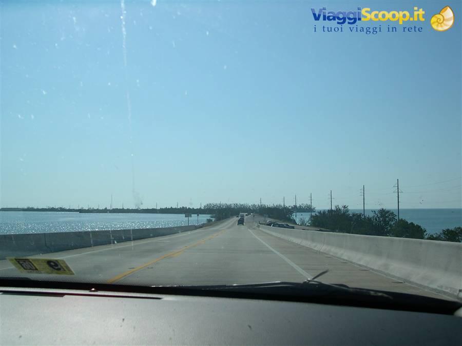 Velocità datazione Orlando FL