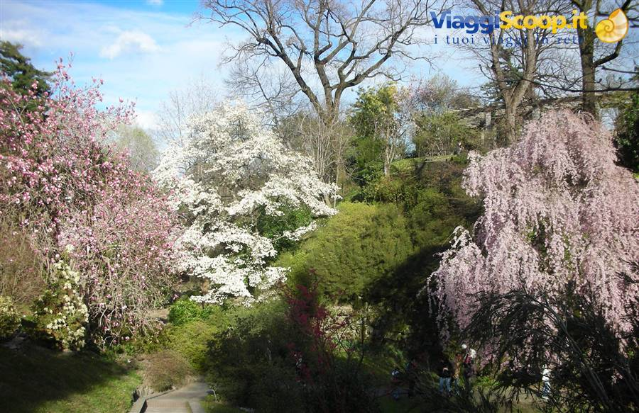 Giardini di villa taranto italia - Giardini bellissimi ...