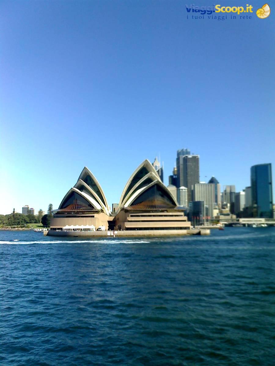 AUSTRALIA l'isola dei canguri : AUSTRALIA