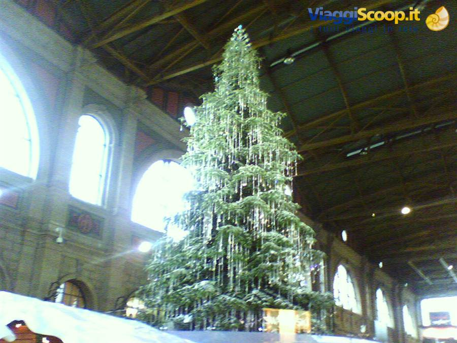 Addobbi Natalizi Zurigo.Mercatino Di Natale A Zurigo Svizzera