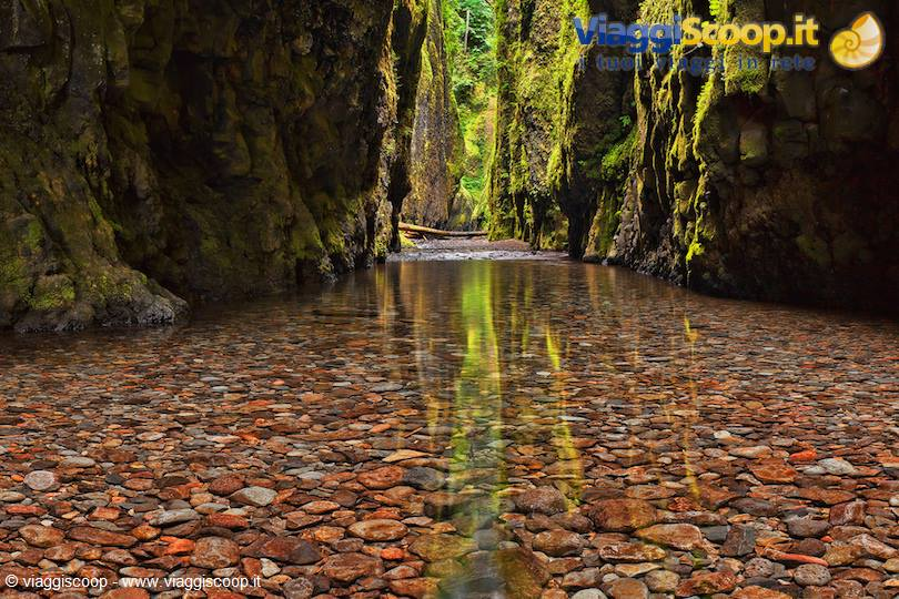 <strong>Oneonta Gorge</strong>