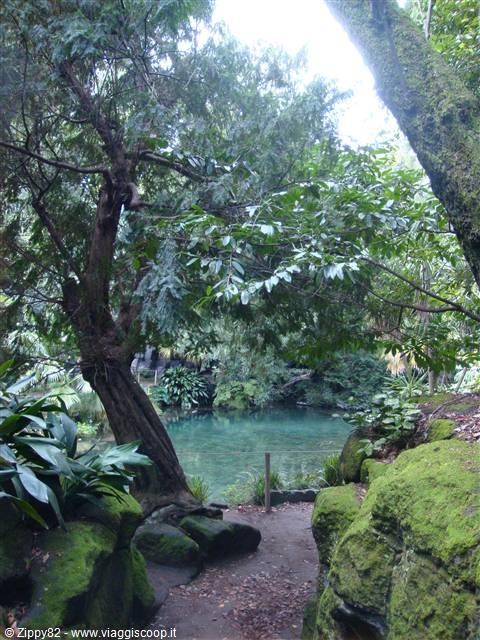 Foto angoli nascosti del giardino all 39 inglese italia - Angoli di giardino ...