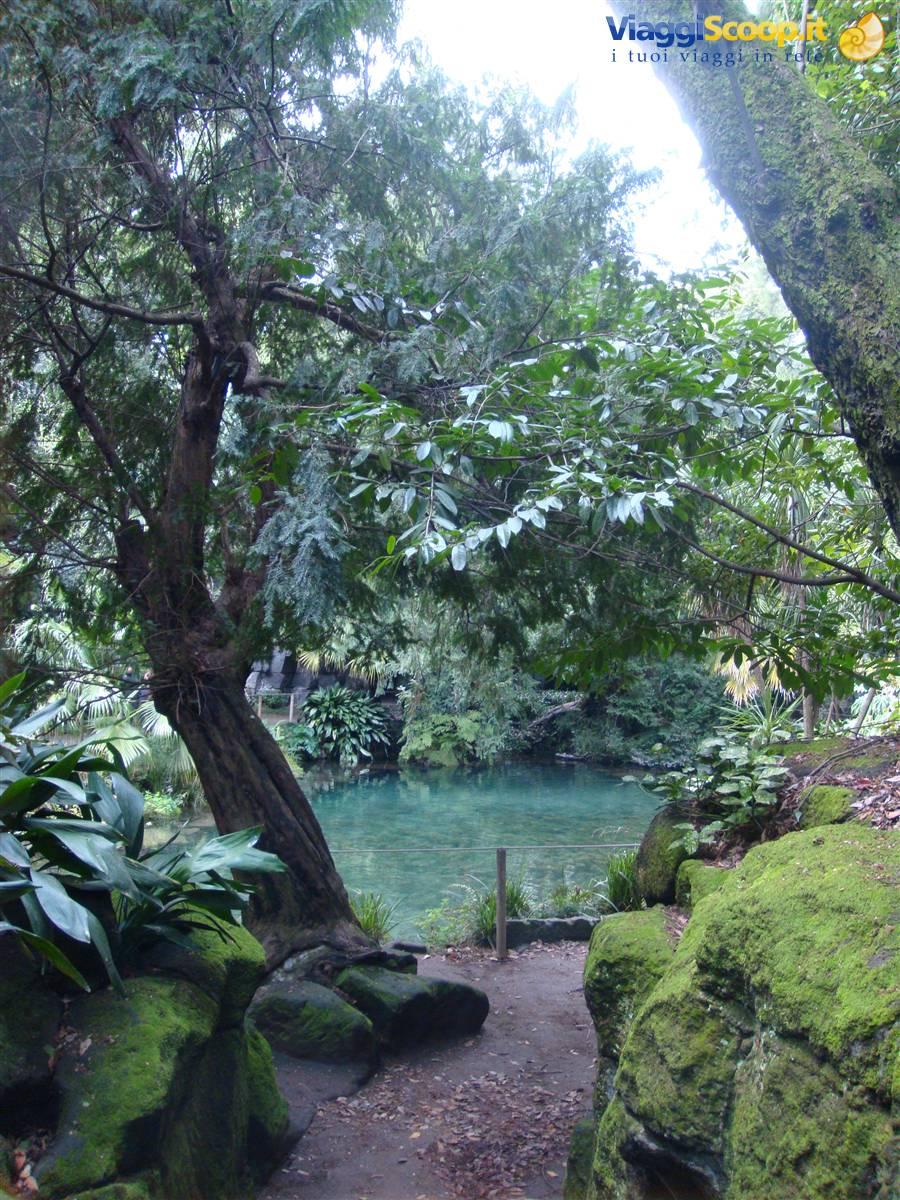 Foto angoli nascosti del giardino all 39 inglese italia for Foto angoli giardino