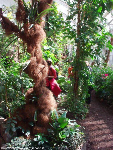Casa Delle Farfalle Giardini