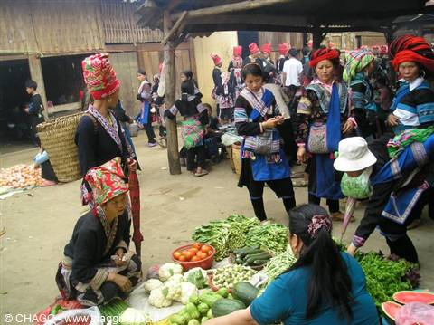 Hanoi mercato galleggiante