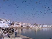 Pushkar lago sacro INDIA