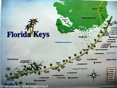 Il meglio della florida tour miami keys everglades e - Zoomarine bagno coi delfini ...