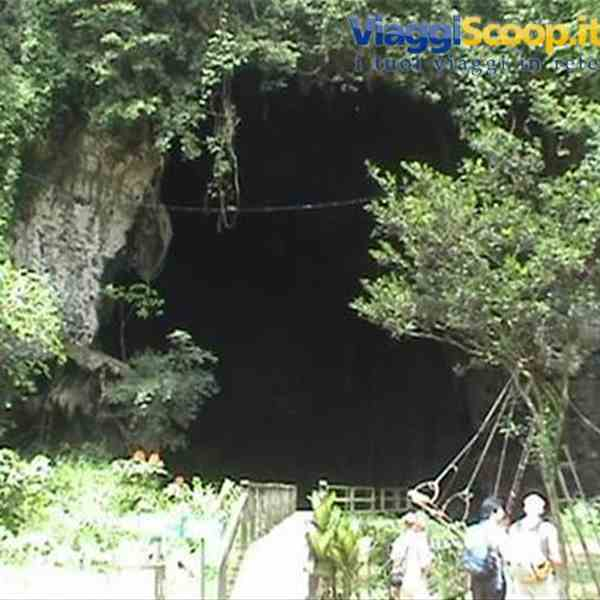 Gomatong Caves