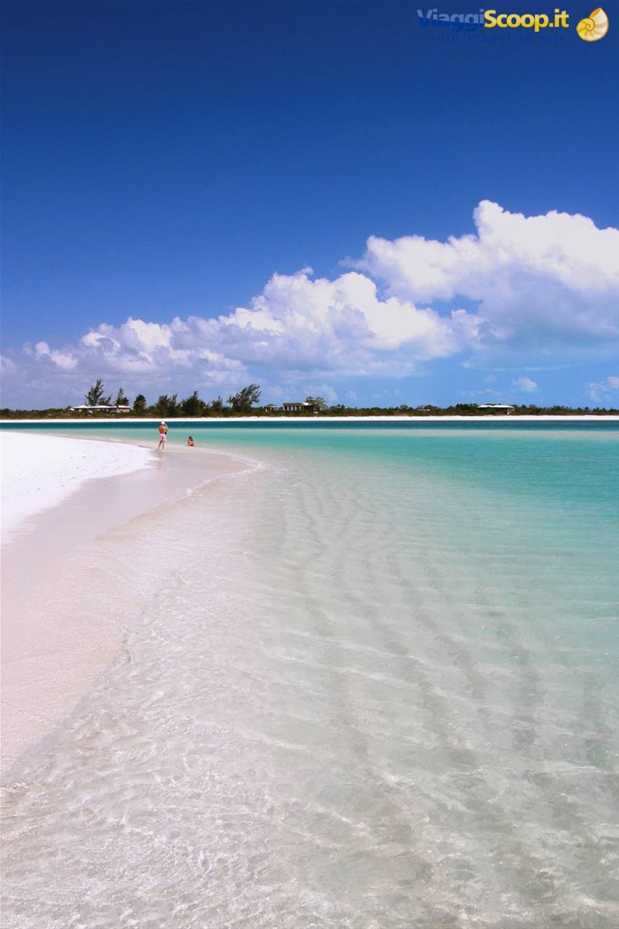 Spiaggia fra i Cays a nord ISOLE TURKS E CAICOS