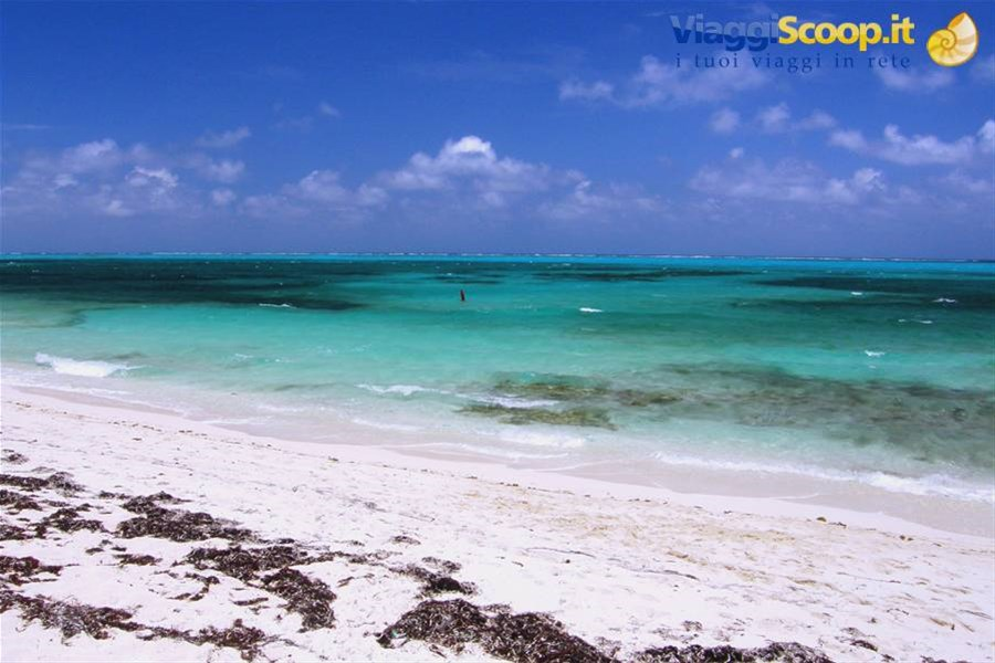 Grace Bay - Smith's Reef ISOLE TURKS E CAICOS