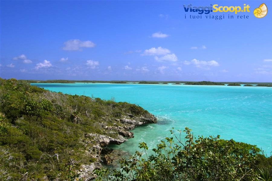Chalk Sound National Park ISOLE TURKS E CAICOS