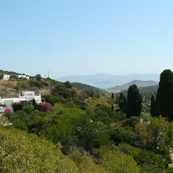Lefkes Village - Panorama