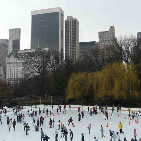 Wollman Rink-Central Park