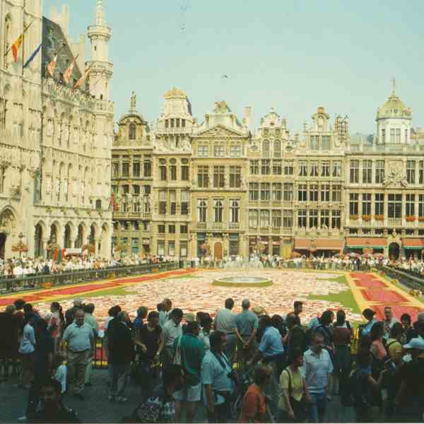 Bruxelles, grand place fiorita