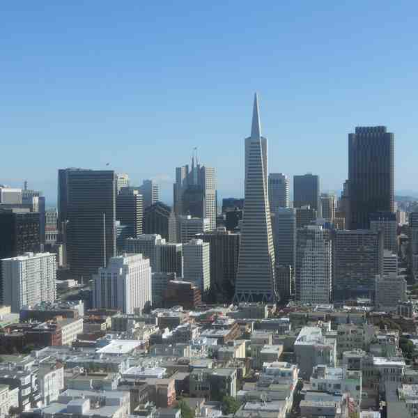 Financial district dalla Coit Tower