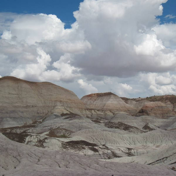 Petrified Forest - Blue Mesa Trail