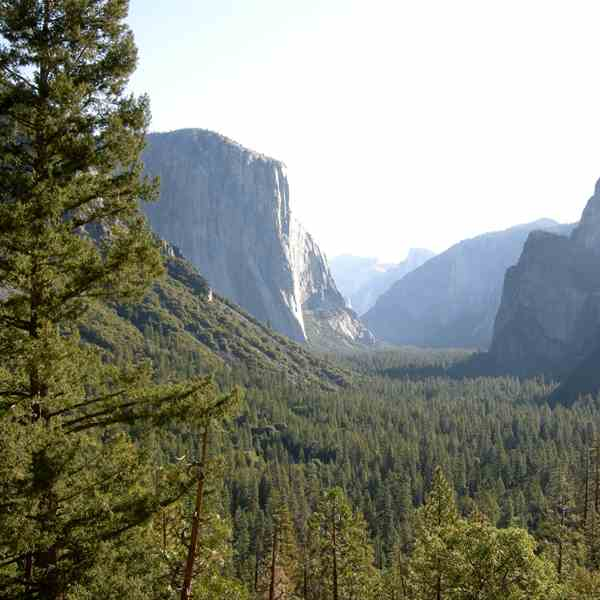 Yosemite National Park - The Glacer